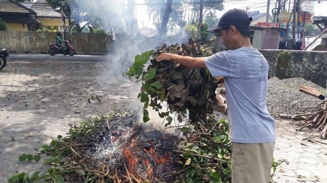 Catat! Pemkot Tangerang Bakal Denda Pembakar Sampah 50 Juta