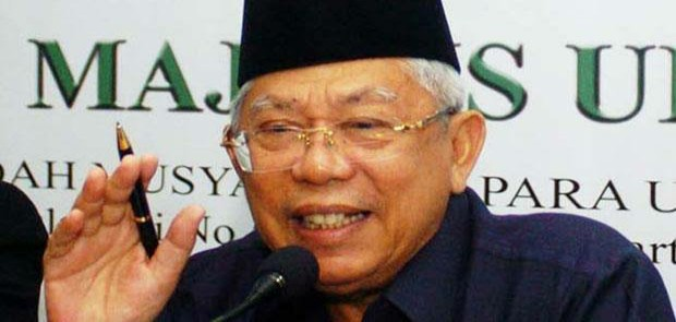 Ma'ruf Amin Bertemu Jokowi, Bahas Aksi 313 ?