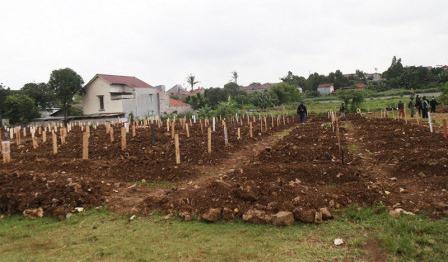 Dinas Pertamanan dan Hutan Kota Jakarta Tambah 7.600 Petak Makam