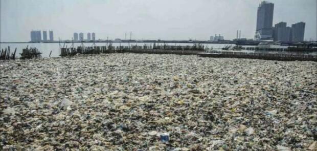Teluk Jakarta Jadi Lautan Sampah, Ini Kata Walhi