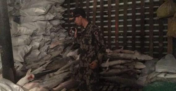 Kapal Asing Fu Yuan Yu 831 ditangkap Saat Illegal Fishing