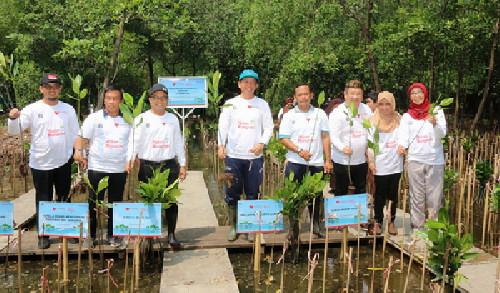 Dukung Penanganan Abrasi, Bank DKI Tanam 5000 Bibit Mangrove di Jakarta Utara