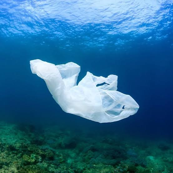 Pemprov DKI Resmi Larang Penggunaan Kantong Plastik