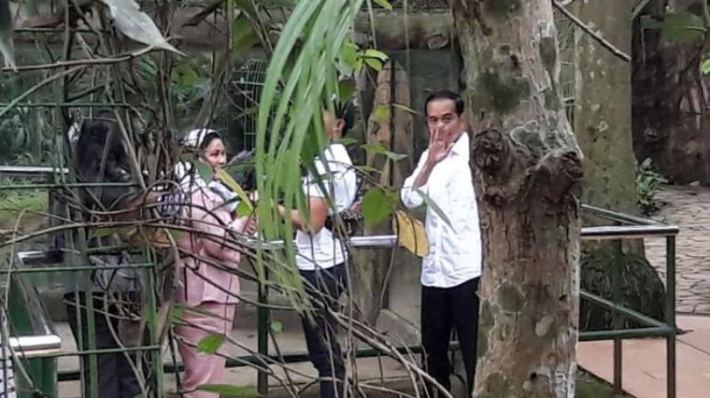 Jagad Medsos Geger #JokowiTerlihatKeranya Trending, Ada Apa?